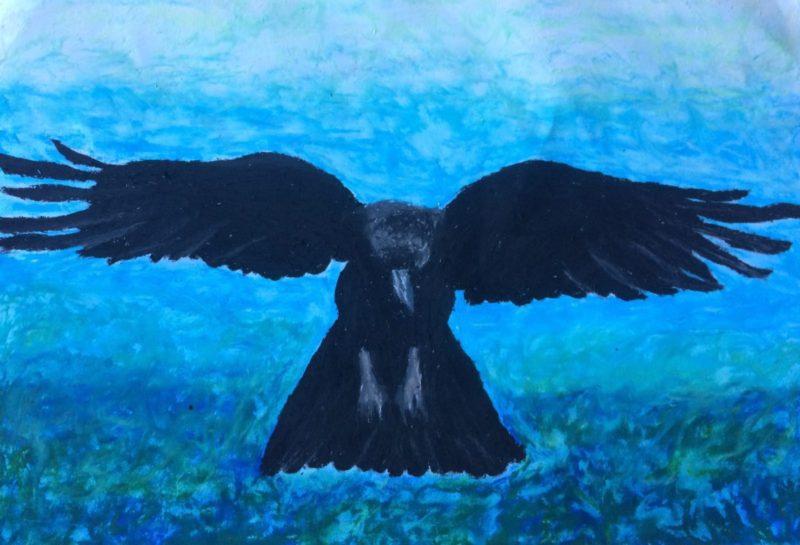 Crow Blue 1600 x 1090