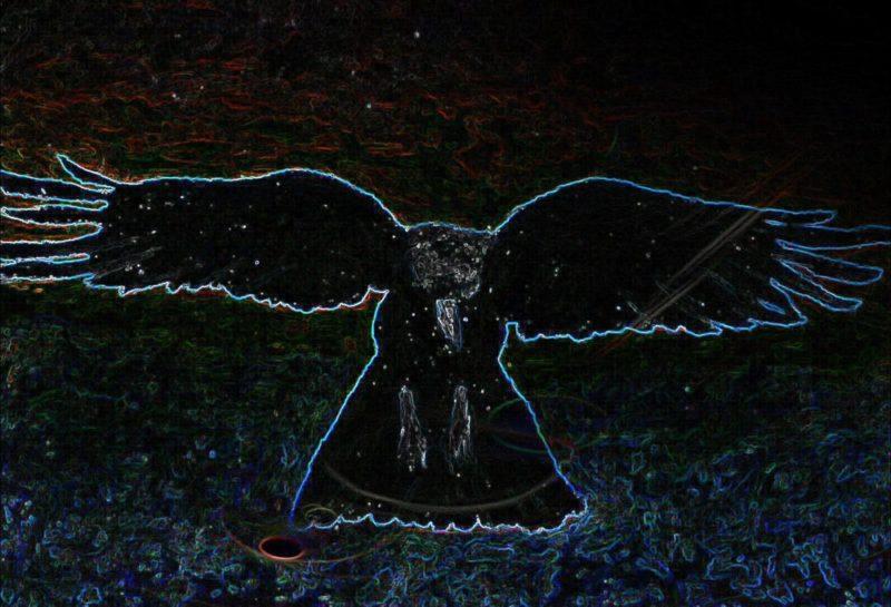 Crow Dark 1600x1090